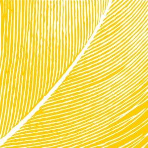 フェザーイラスト黄色